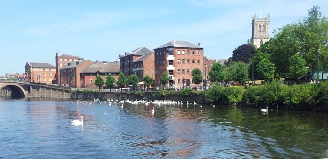 Town Canal-Side with Many Swans